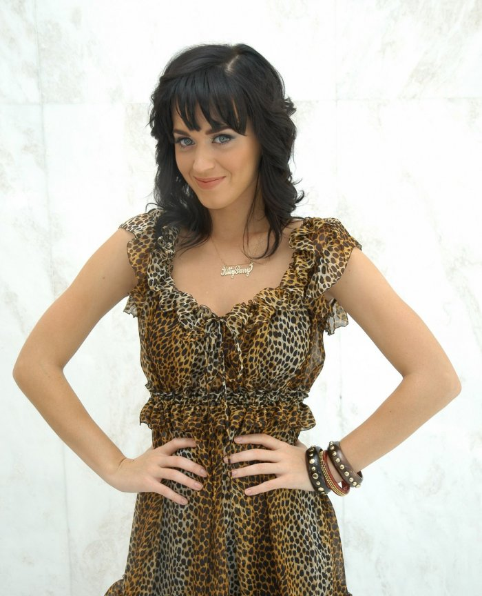 Кэти Перри 2008